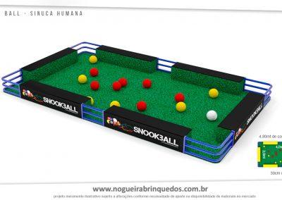 00 Snookerball